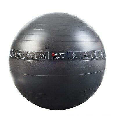 Pure2Improve Exercise Ball Gym Yoga Pilates Fitness Workout Core Train P2I200080