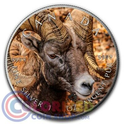 2016 Canada $5 Maple 1 oz Silver Bighorn Colorized Antique Coin NEW