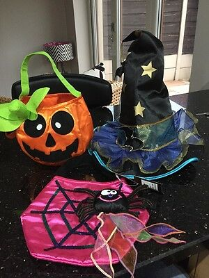 Brand New Marks And Spencer's Hallloween Hat And Bags