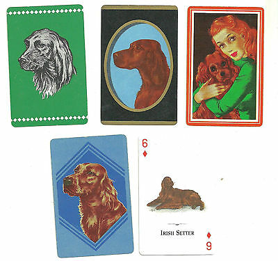 Rare Vintage Irish Setter Dog Playing Card  Collection All Original