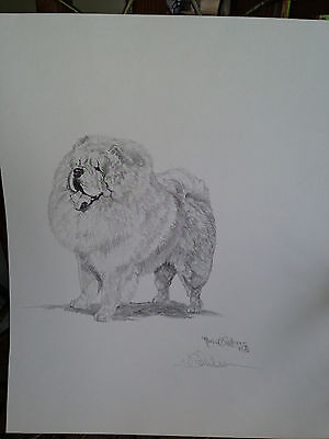 Dog Print Chow Chow Dog Signed by Artist 1976