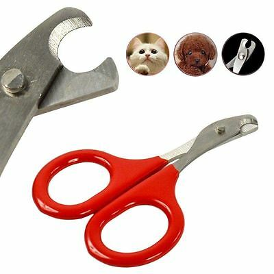 Mini Red Stainless Steel Claws Nail Clipper Cutter Grooming for Pet Dog Animals