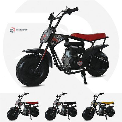 RiiRoo 80cc Off Road Bike Motorbike Outdoor Kids Ride On Motorcycle