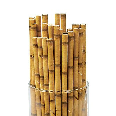 Bamboo Paper Straws Pack Of 24 Hawaiian Luau Jungle Party Supplies