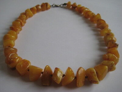 Bernsteinkette Baltic Amber Necklace Butterscotch