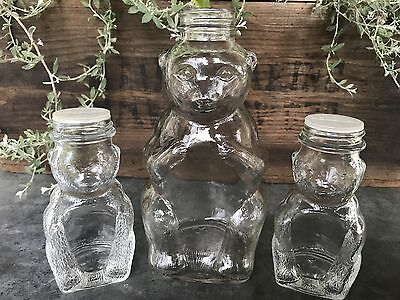 Lot 3 Vintage Glass Bear Banks 1 Snow Crest Beverages 2 Domino Cinnamon Sugar