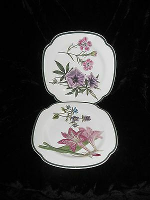 Spode Williamsburg Burgess Botanicals Salad Plates SET OF TWO NEW