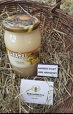 1.25 Kg Natural Rapeseed Honey/naturalny Miód Rzepakowy (Miod)