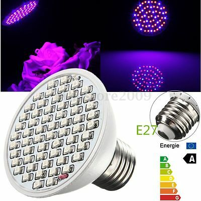 E27 6W ZW002-60 3528 SMD Red Blue Plant Grow Light Lamp Garden Indoor Bulb 430lm