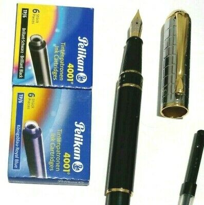 Stylish Fountain Pen With 6 Ink Cartridges And A Ink Converter
