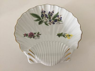 "Royal Worcester Worcester Herbs Gold Trim Sage Shell Shape Dish, 8 7/8"" x 8 1/2"""