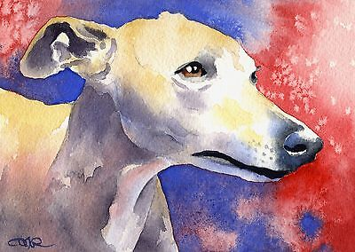 WHIPPET Dog Watercolor 8 x 10 ART Print Signed by Artist DJR
