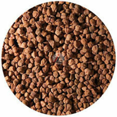 Black Chickpeas (Kala Chana) - 500 gm