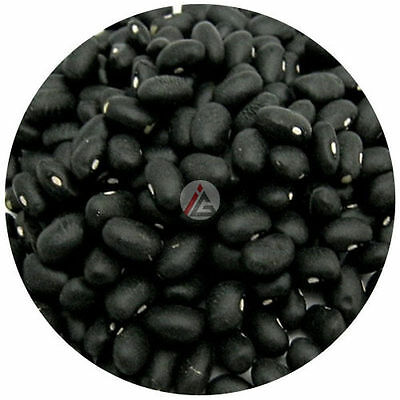 IAGS - Dried Black Turtle Beans - 1 KG