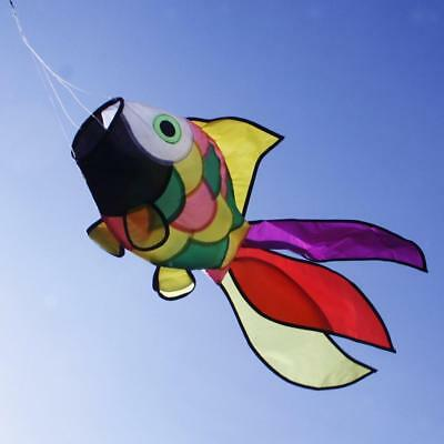 Vivd Flying Fish WINDSOCK Single Line Kites Kid Outdoor Toy Kite Flying Game