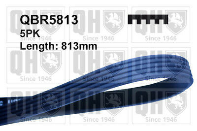 Multi V Drive Belt fits BMW X5 E53 3.0D 01 to 03 QH Genuine Quality Replacement