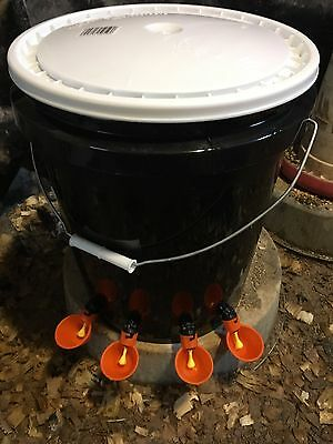 Labor Day AUTOMATIC CHICKEN POULTRY WATERER FEEDER BUCKET, 4 DRINKING CUPS