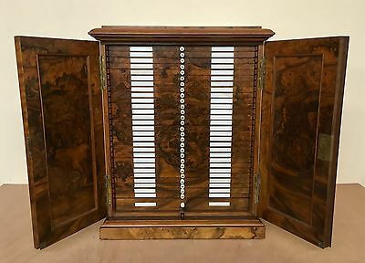 Antique Burr Walnut Microscope Slide Cabinet / Collectors Specimen Coin Cabinet