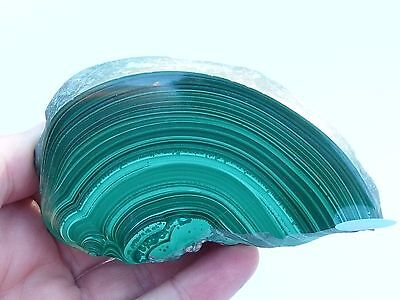 Malachite, One Face Polished. Superb pattern! 370 grams.