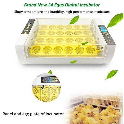 24 Eggs Chicken Duck Digital Incubator Hatcher Auto Turning Temperature Control