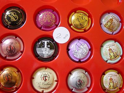 Lot N°28 Capsules champagne + BOURMAULT LUC
