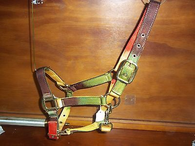 Halter By Stc, Rancher Autumn, Pony Size, Quality Halter , Rrp $29.95