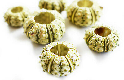 "6 Green Knobby Mini Sea Urchins (3/4""-1 1/4"") Beach Crafts Hobby Decor Nautical."