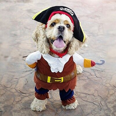 Dog Outfit Fancy Dress Costume Pirate Teacup Puppy Xs Small Halloween