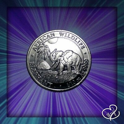 2017 1/10 oz AUTHENTIC Silver Somalia Elephant Bu Specimen Coin