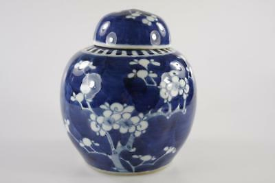 Vintage Chinese Blue & White Ginger Jar Plum Blossoms