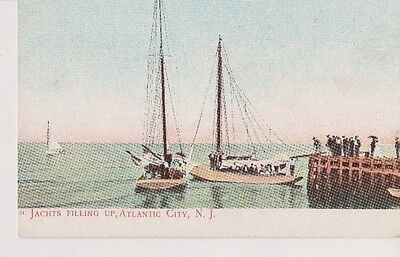 Vintage Postcard Jachts Filling Up Atlantic City NJ