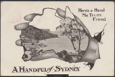 Sydney - The Harbour from Clifton Gardens