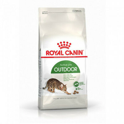 Croquettes pour chats Royal Canin Outdoor 30 Sac 10 kg