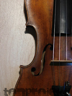 Antique 4/4 Violin Stainer Style Violon Fiddle Germany Ready to Play rissfrei