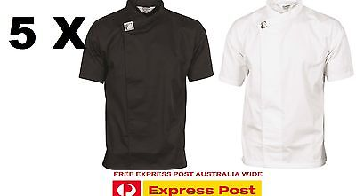 5 X Tunic Jacket/shirt Waiter Chef Cafe Restaurant Hospitality Dnc 1121