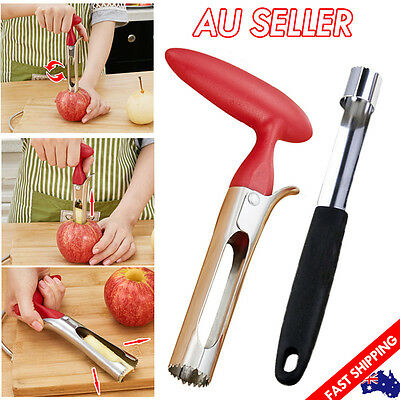 Stainless Steel Handheld Twist Fruit Core Seed Remover Apple Corer Kitchen Tool