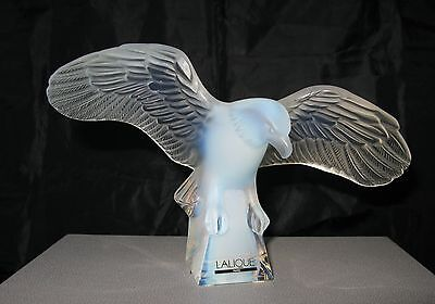 Lalique Fabulous Opalescent Eagle With Outstreched Wings New In Box
