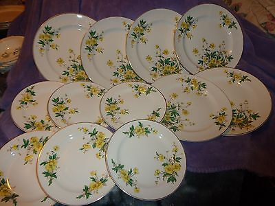 12 Pc Lot ~6 Vintage China Dinner Plates & 6 Dessert~ Buttercup~Edwin M. Knowles