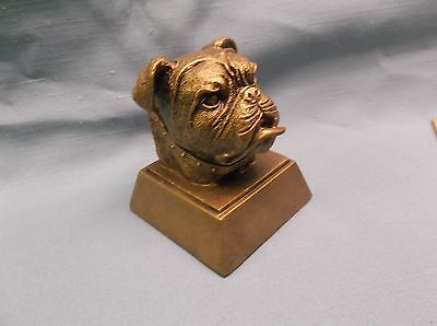 resin bulldog mascot trophy award RS470