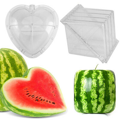 Square/Heart Shape Watermelon Pumpkin Growing Mold Garden Growth Plastic Mould