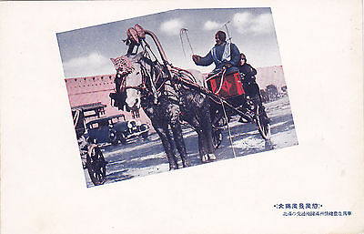 Manchuria , China , 1910-20s ; Man in Horse pulled Cart