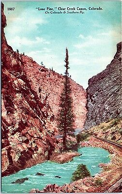 Colorado Postcard Lone Pine Clear Creek Canon CO C&S RR Tracks Tall Tree Water