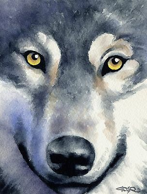 WOLF Wolves Watercolor 8 x 10 ART Print Signed by Artist DJR