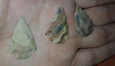 Ancient 3 Neolithic Flints Arrow head 6000-4000 BC