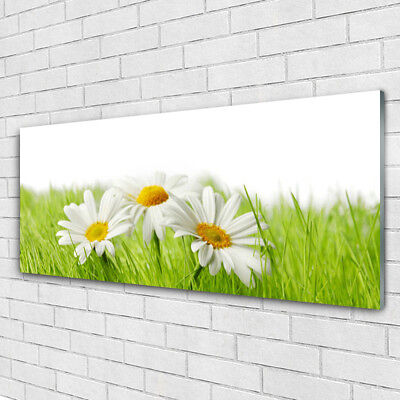 Glass print Wall art 125x50 Image Picture Grass Flowers Floral