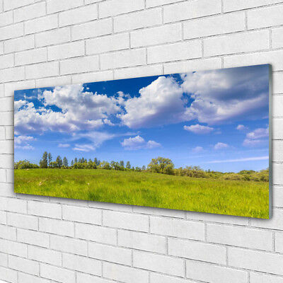 Acrylic print Wall art 125x50 Image Picture Meadow Grass Landscape
