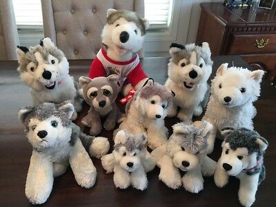 Siberian Husky Plush Lot Of 10! All Sizes & Manufactures! LOOK!