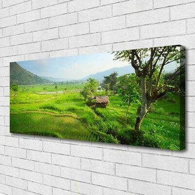 Canvas print Wall art on 125x50 Image Picture Meadow Nature