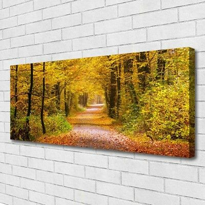 Canvas print Wall art on 125x50 Image Picture Forest Nature