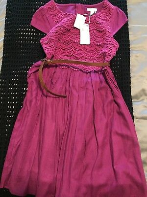 Girls Size 11 Pumpkin Patch Dress